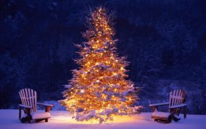 easy outdoor christmas decorating ideas - Econodek